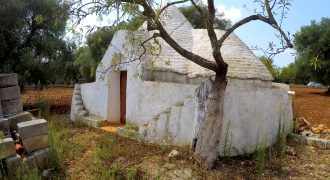 Trulli – Ceglie Messapica – C.da Spadalonga